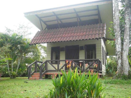 Maquenque Eco-Lodge: Toucan back deck...