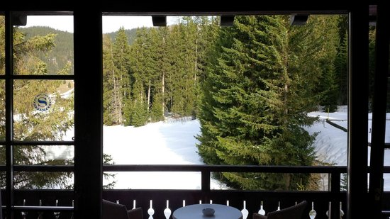 Arabella Hotel Waldhuus Davos: Amazing view from the room