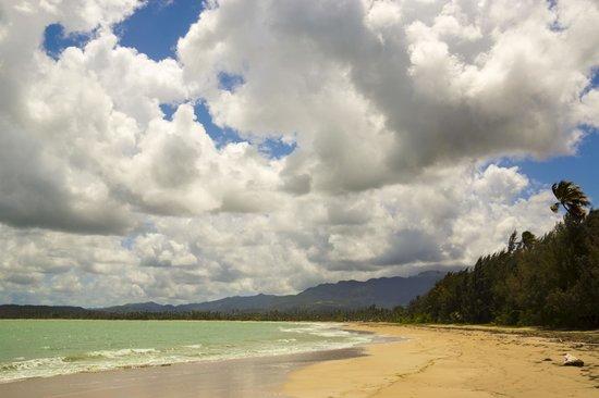 The St. Regis Bahia Beach Resort : Beach
