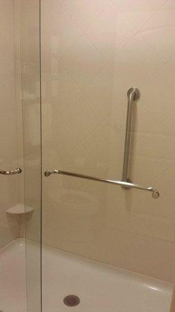 Hampton Inn & Suites Tifton: Shower