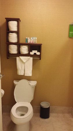 Hampton Inn & Suites Tifton: Bathrooms were immaculate