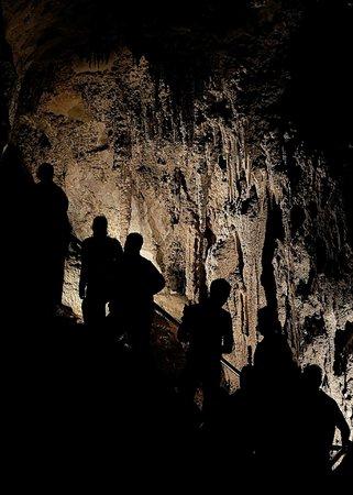 Jenolan Caves : Lucas Cave