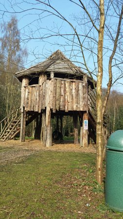Wild Duck Holiday Park - Haven: The tree house along the woodland walk