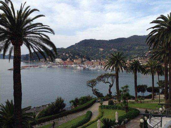 Hotel Continental: Santa Margherita Ligure ed il suo bel porticciolo