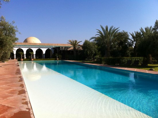 Manzil la Tortue: the pool