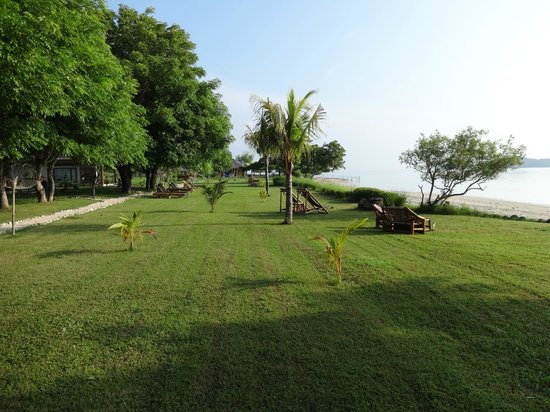 Pearl Beach Resort: lawn of sunbathing