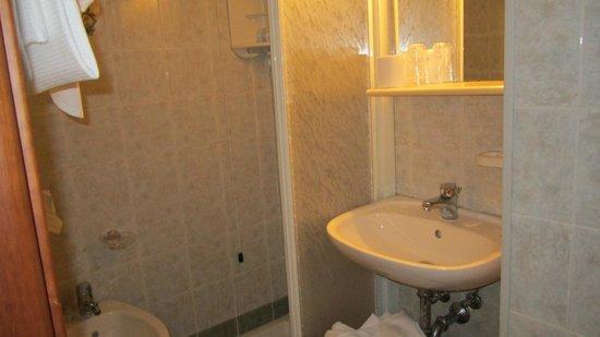 Hotel Terminus & Plaza : Bagno