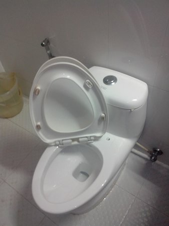 Sun Tara Beach Resort : Broken Toilet Seat