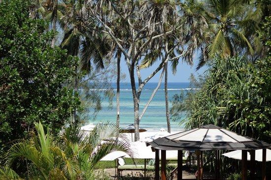 The Sands at Nomad: Blick von der Terrasse der Junior-Suite