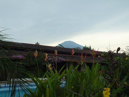 Villa Sumbing Indah: Vue du volcan Sumbing derriere les bungalows