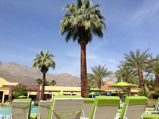 Renaissance Palm Springs Hotel: Schöne Poollandschaft