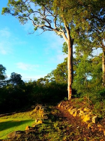 Spicers Sangoma Retreat: The gardens