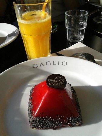 Gaglio : Dôme fruits rouges