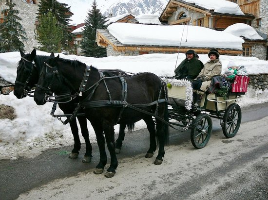 Ranch el Colorado : Calèche