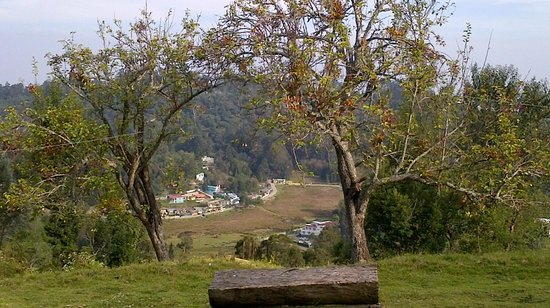 Surya Holidays Kodaikanal : View of Valley from Bonfire Area