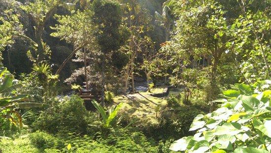 The Royal Pita Maha: view of the river from the villa