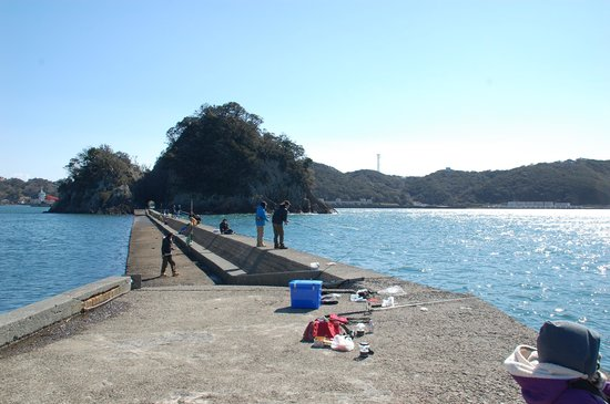 Shimoda Onsen: 犬走島への道