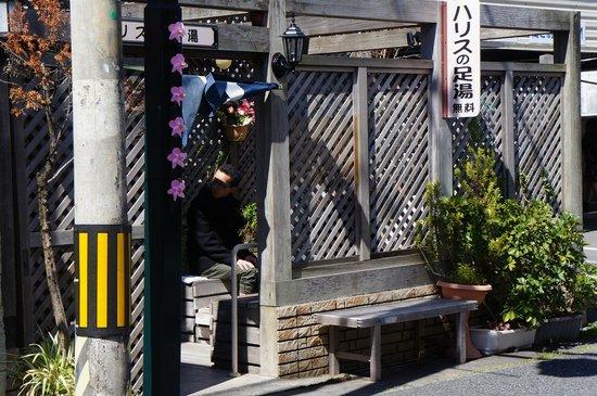 Shimoda Onsen: ハリスの足湯