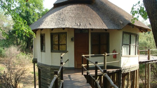 Sanctuary Sussi & Chuma: Tree house