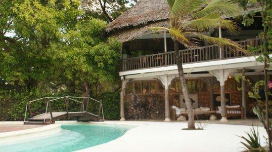 White Elephant Sea & Art Lodge: bar fronte piscina principale