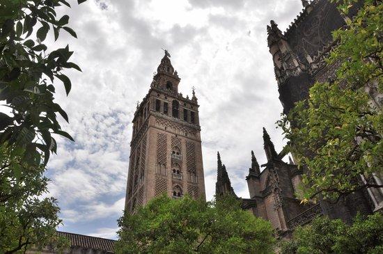 Torre Giralda : la Giralda desde el patio de los naranjos