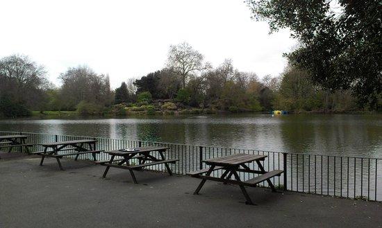 La Gondola Al Parco