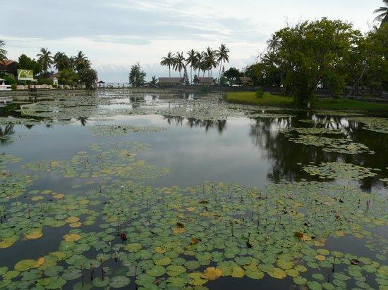 Rama Candidasa Resort & Spa : Candidasa