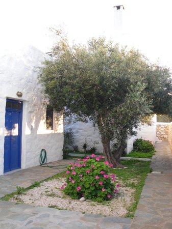 anezina village