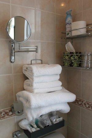 Fleetwater Guest House: Bathroom