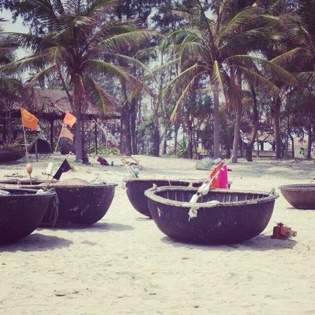Cua Dai Beach : Fisherman's boats