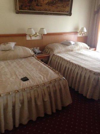 Europejski Hotel : Room