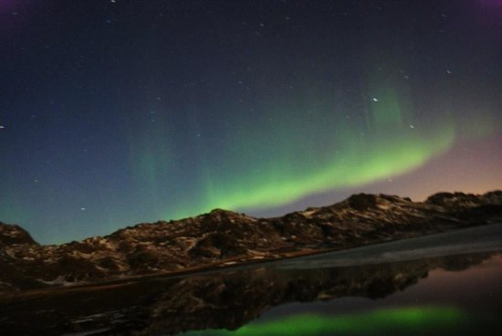 Northern Light Inn : The Northern Lights (excursion booked through reception)