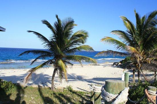 Stella Maris Resort Club: Океан