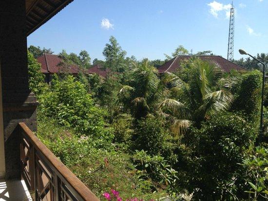 Bhuwana Ubud Hotel : Room 218 view
