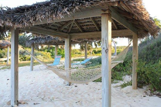 Stella Maris Resort Club: Гамак на пляже
