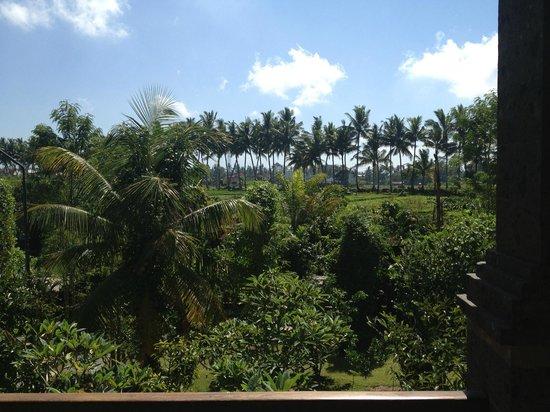 Bhuwana Ubud Hotel: room 218 view