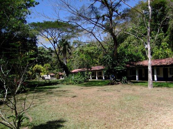 Tilajari Hotel Resort: Grounds in front of rooms