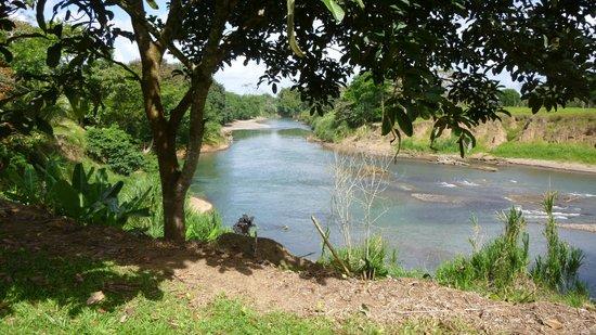 Tilajari Hotel Resort: Tarcoles river