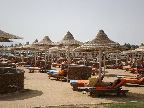 Siva Grand Beach Hotel: The beach (not nice sand)
