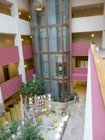 Hinotani Onsen Misugi Resort: ホール