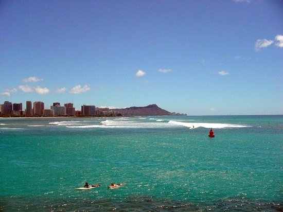 Kaka'ako Waterfront Park (Point Panic Beach Park): これぞハワイ的なロケーション