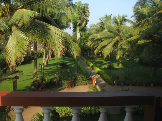 Chalston Beach Resort : view from first floor room F-27..that paathway leads to the shack n to the beach
