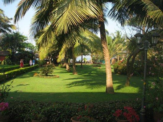Chalston Beach Resort : well maintained garden
