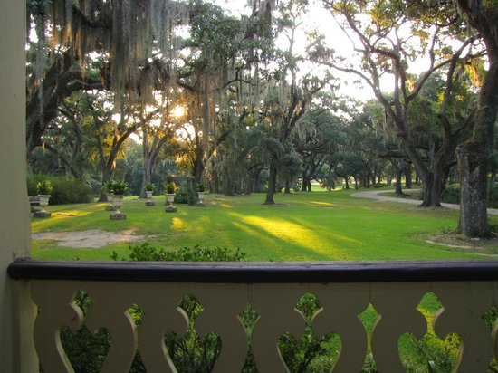 Butler Greenwood Plantation: Morning comes to the cathedral-like front lawn of Butler-Greenwood