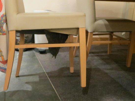 Résidence Club mmv Belle Plagne Le Centaure : dessous de chaises