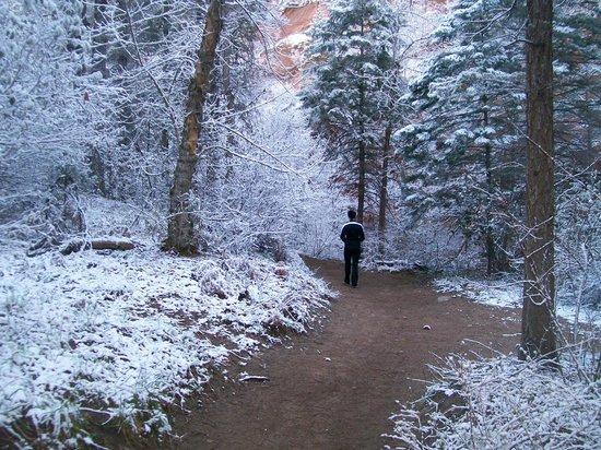 West Fork Oak Creek Trail : OMG