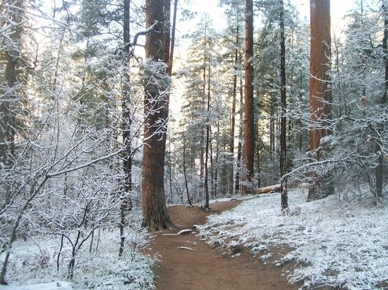 West Fork Oak Creek Trail : A PICTURE'S WORTH A 1000 WORDS