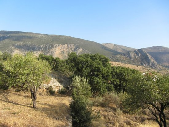 Delphi Rooms & Bungalows : View of the mountains from our hut