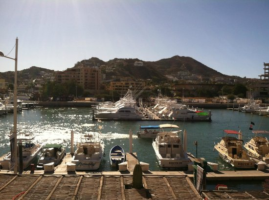 Marina Cabo Plaza: Not got tired of this view!