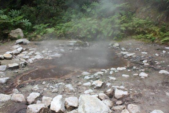 Environmental Interpretation Centre of Caldeira Velha: Caldeira Velha